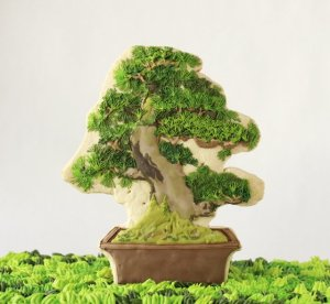 bonsai_detail_s
